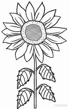 sunflower coloring page getcoloringpages