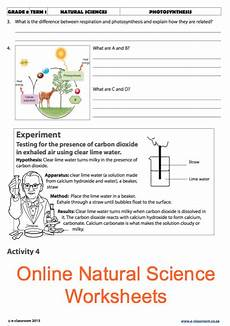 grade 8 science worksheets 13462 grade 8 science photosynthesis for more worksheets visit www e classroom co za