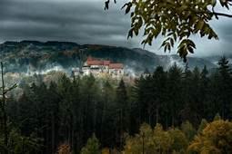 Nature Landscape Trees Forest Pernstejn Czech