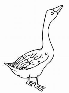 angry goose coloring page netart