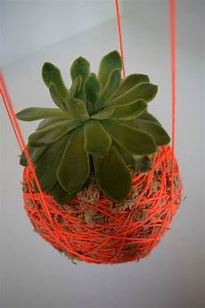 indooroutdoor hanging moss balls filled with plants diy hanging moss planter l hanging string plant