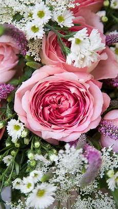 flower wallpaper for note 3 11 best samsung galaxy note 3 wallpapers images on