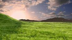 grass animation made in blender 3d 2 58a hd youtube
