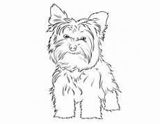 Malvorlage Kleiner Hund Kostenlose Malvorlage Hunde Terrier Zum Ausmalen