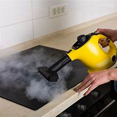 quel nettoyeur vapeur choisir but