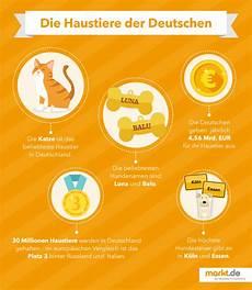 die beliebtesten haustiere die beliebtesten haustiere in deutschland markt de