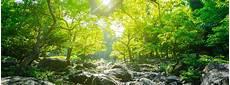 Komunikasi Alam Sekitar Di Malaysia Majalahsains