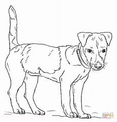 terrier coloring for free
