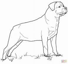 Malvorlagen Hunde Rottweiler Ausmalbild Rottweiler Ausmalbilder Kostenlos Zum Ausdrucken