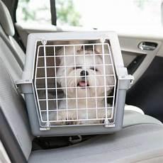 hundetransport auto rückbank ᐅ hundebox test 2019 vergleich der besten hundetransportboxen