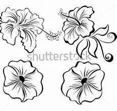 Malvorlagen Hawaii Blumen Pin Gubik Auf Butterfly Coloring Ausmalbilder