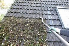 Moos Auf Dach Pflanzen F 252 R Nassen Boden
