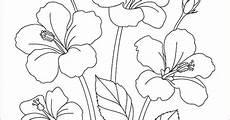 29 Gambar Bunga Teratai Yg Bagus Di 2020 Lukisan Bunga