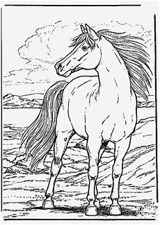 Pferde Ausmalbilder Spirit Spirit Coloring Pages Gallery Whitesbelfast