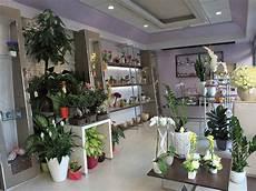 negozio fiori negozio di fiori santeramo in colle bari meluzzo