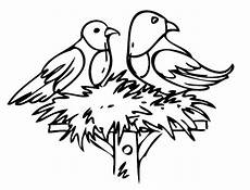 kostenlose malvorlage v 246 gel zwei v 246 gel im nest zum ausmalen