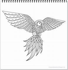 Ausmalbilder Kostenlos Zum Ausdrucken Papageien Papagei Mandala Ausmalbilder Zum Ausdrucken Parrot Mandala