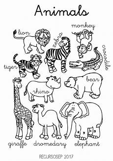 animals worksheets for primary 13865 animals 001