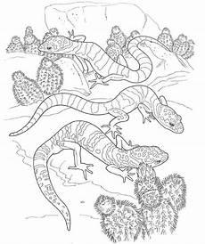 desert animals coloring pages printable 16950 desert animals coloring pages printable desert animals coloring kleurplaten voor volwassenen