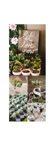 Succulent Wedding Favours Rustic Wedding Ideas