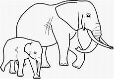 Malvorlagen Elefanten Ausdrucken Malvorlagen Elefanten Kostenlos Ausdrucken Coloring And