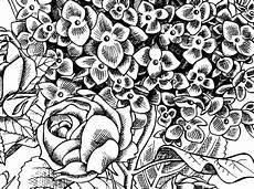 Malvorlagen Kostenlos Herunterladen Malvorlagen Blumenmotive