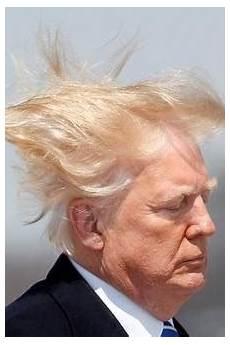 donald haare donald peinliche panne hier fliegen seine haare