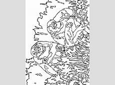 Kleurplaten Apen: Bewegende Afbeeldingen, Gifs & Animaties