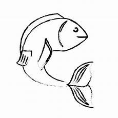 Malvorlagen Tiere Xl Malvorlagen Delfin Xl Malvorlagen