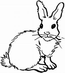Malvorlagen Kaninchen Kostenlos Ausmalbilder Kaninchen Ausdrucken Ausmalbilder