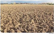 le de sol 15031 des sols et des hommes chapitre 4 les sols en danger ird 201 ditions