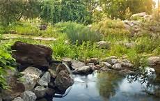 Steingarten Mit Teich - steingarten anlegen gestalten ideen bilder beispiele