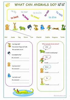 can animals do worksheets 13837 what can animals do esl worksheets