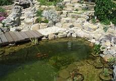 Gartenteich Wasser Marsch Bauemotion De