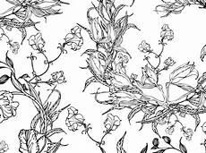 Ausmalbilder Blumen A4 Colouring Pages Floral Motifs