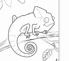 free animals coloring pages zoo to