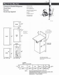 squirrel houses plans southern flying squirrel house plans