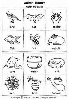 by vicki elbon classroom ideas preschool science animal habitats kindergarten lessons
