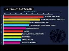 us deaths 2019