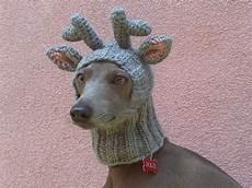 hund mit mütze delivery in 2018 reindeer hat reindeer snood