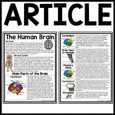 human brain reading comprehension worksheet science nervous system