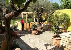 Garden 16 Mediterranean Garden Tips And Ideas For