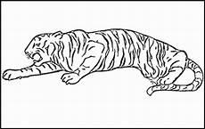 malvorlagen tiger kostenlos ausdrucken ausmalbilder zum ausdrucken ausmalbilder tiger