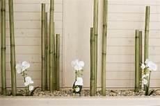deco en bambou maison jardin cuisine brocante comment planter des