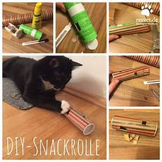 Katzenspielzeug Selber Machen Katzen Spielzeug