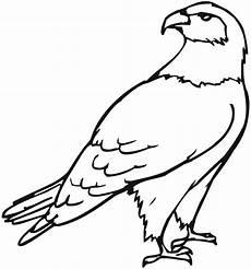 kostenlose druckbare eagle malvorlagen f 252 r kinder