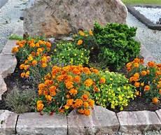 Grabbepflanzung Sommer 069 20120915 159 Www Blumen