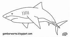 Muat Turun Bermacam Contoh Gambar Ikan Untuk Mewarna Yang