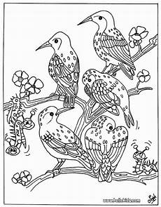 bird coloring pages hellokids