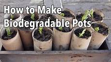 p0tzxs how to make biodegradable plant pots seed